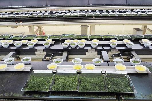鹿児島茶市場
